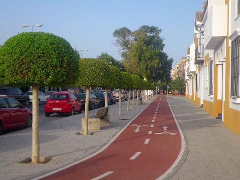Cycle tracks in Delhi
