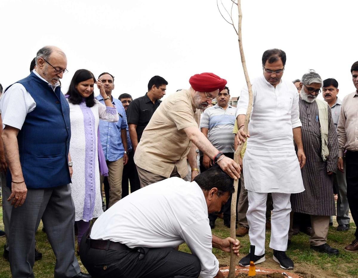 DDA to plant 10 lakh trees