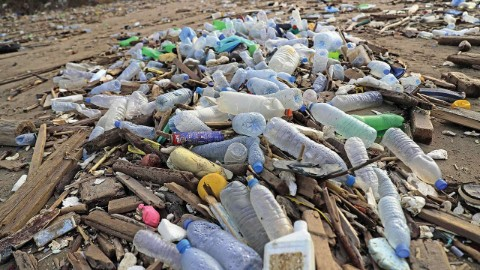 plastic-ban-GVMC-plastic-management