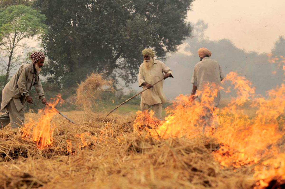 stubble burning-HC-Punjab-Haryana-air-pollution