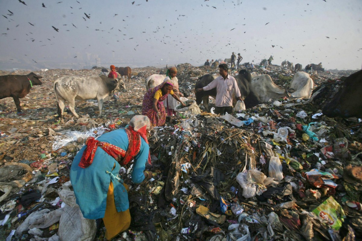 Waste Pollution Delhi