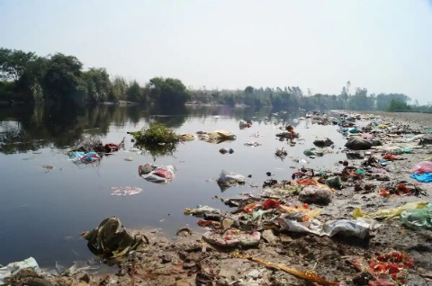 Delhi Water Pollution