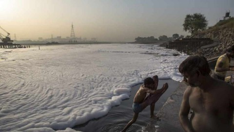 yamuna cleaning