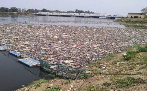 Lakes-pollution-NGT-MPCB-CPCB-KMC