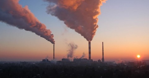 Global CO2 levels reach all time highest