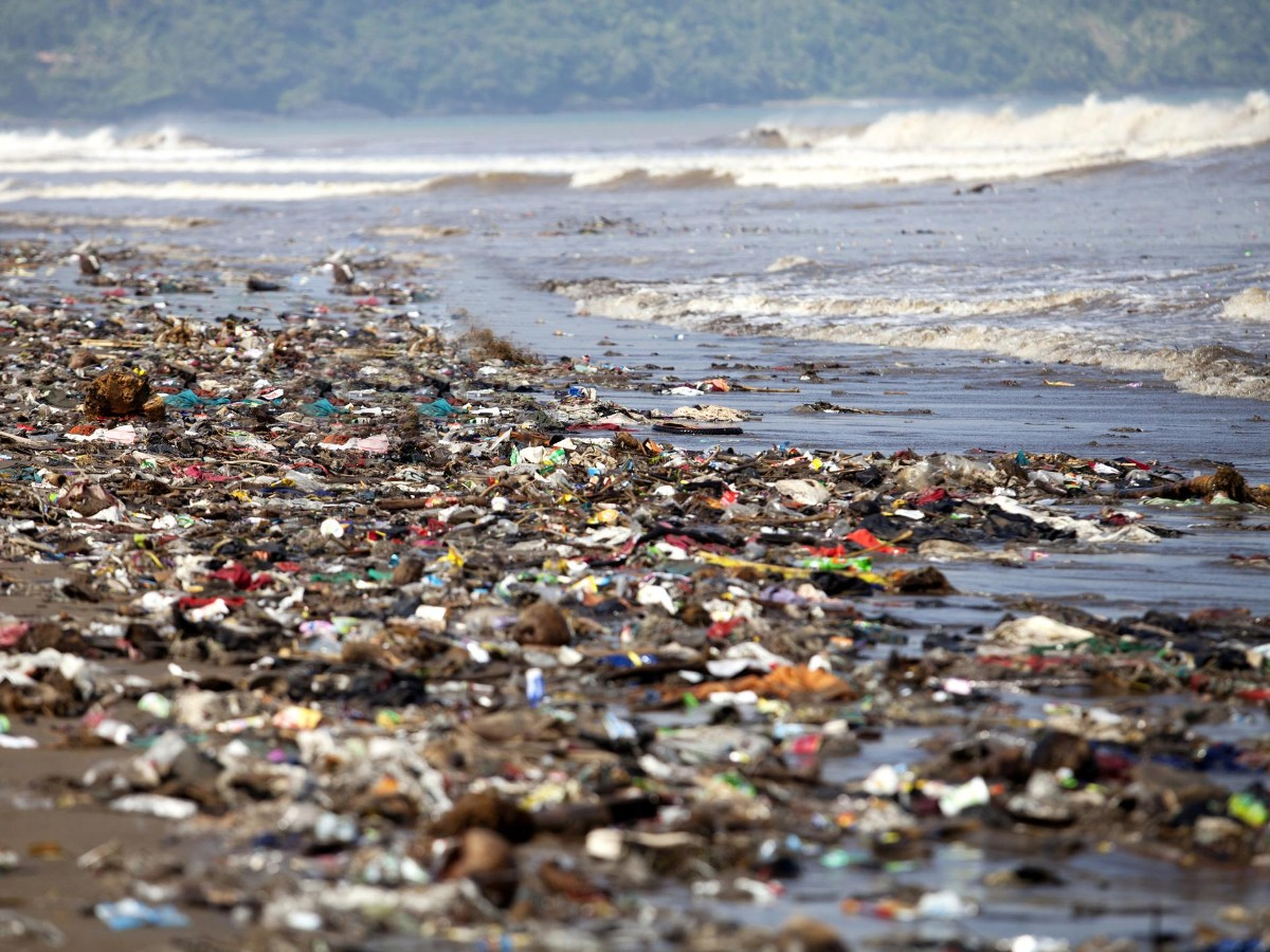 curb chemical and plastic pollution