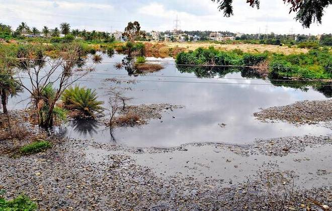 BBMP to certify 183 lakes sewage contamination free