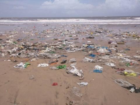 Jallosh-Clean Coasts
