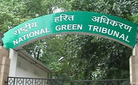 NGT fines Jharkhand, Bihar and WB