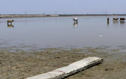 Chennai to restore its water bodies