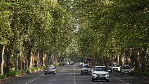 city forests