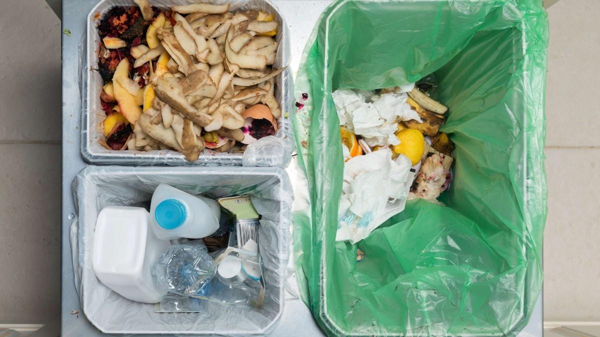 segregated waste