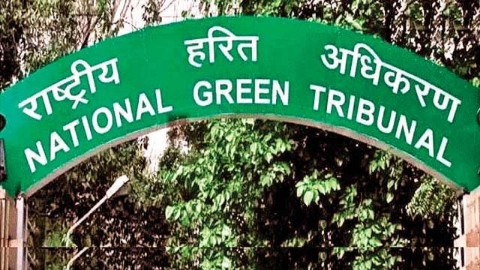 NGT to act against encroachment