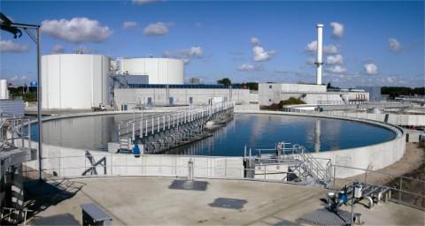 BMC to install proper sewage treatment system