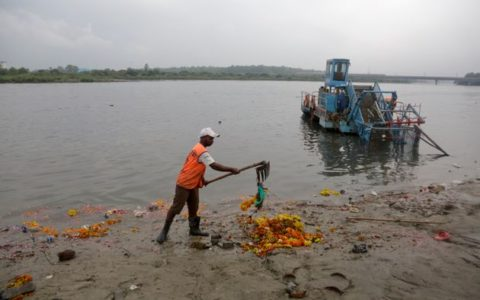 NGT asks authorities to submit specific timelines for cleaning Yamuna