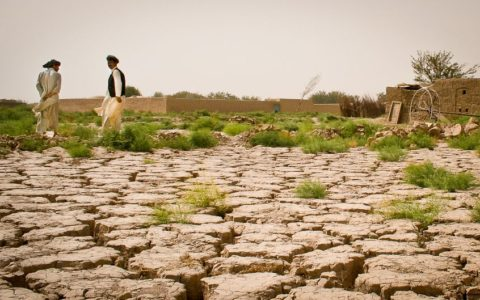 50 lakh hectares of desertified land to be restored by 2030