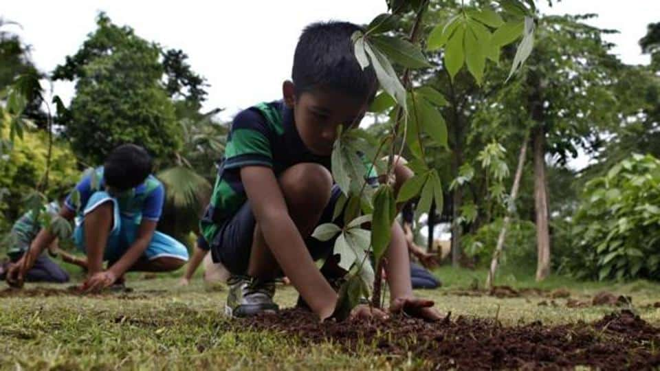 Plantation drive in Solan saw children plant 1,500 saplings