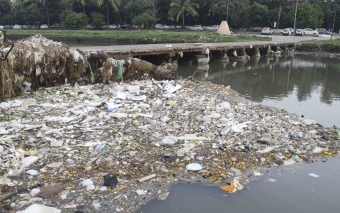Solid debris blocks natural flow of Mutha River in Pune