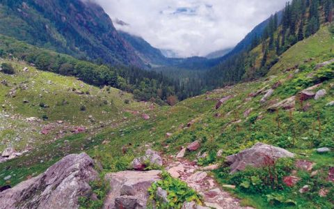 HP constitutes Biodiversity Management Committees in 3370 local bodies