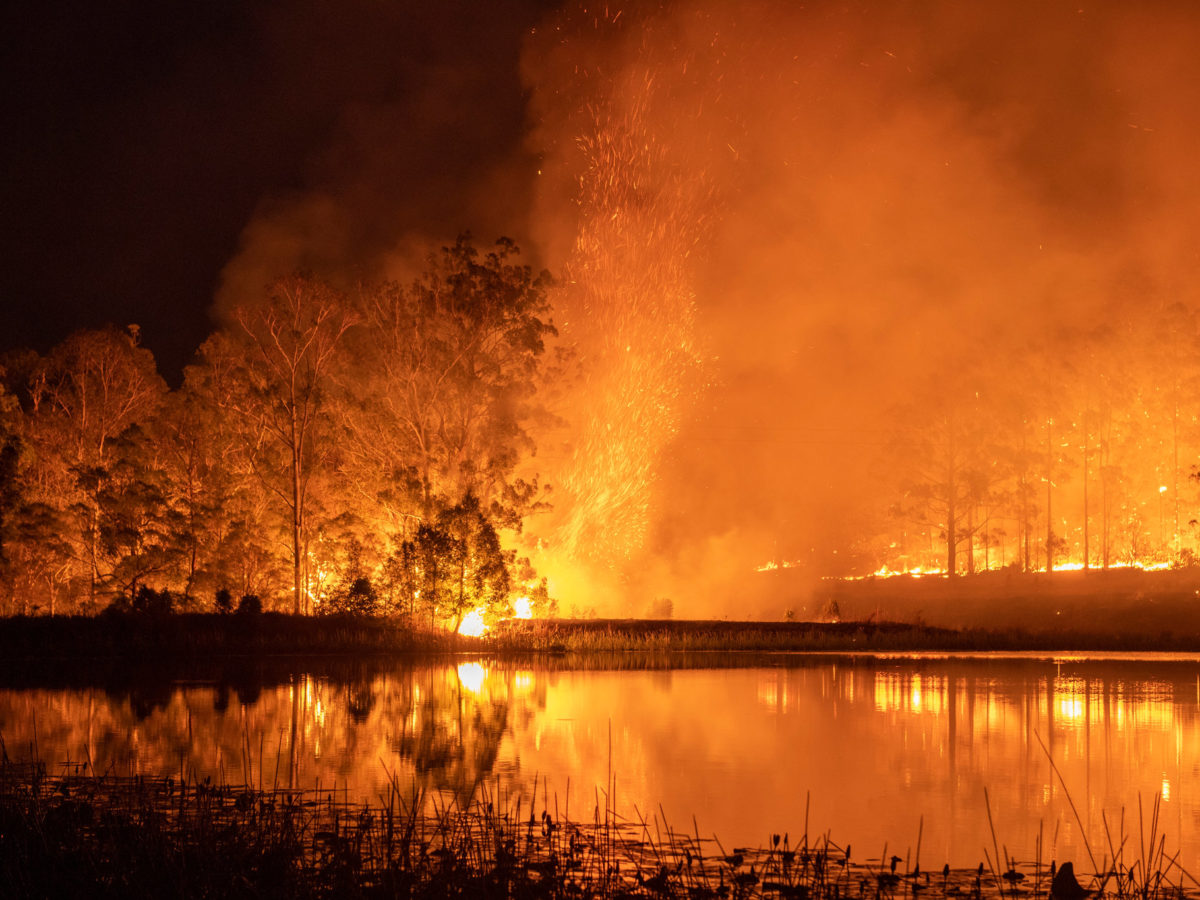 Australia's bushfires may be attributed to climate change