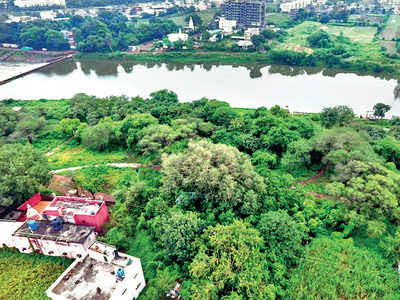 Pune NGO converts dump into city forest