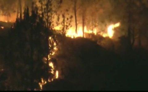 Uttarakhand fire