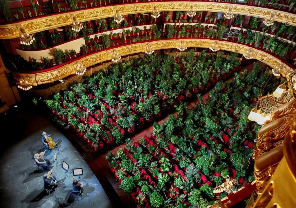 Barcelona Opera reopens with concert for plants