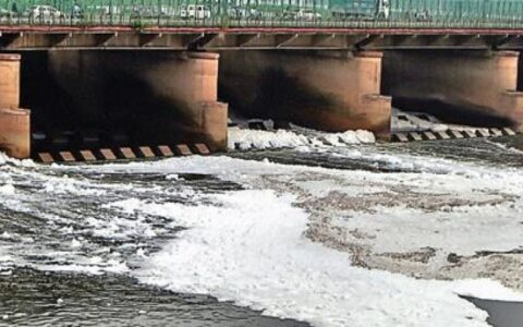 Detergent in sewage caused toxic foam in Yamuna: DPCC to NGT Panel