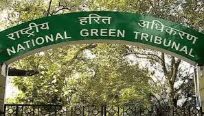 Dispose bio-medical waste properly or pay fine: NGT to MP Government