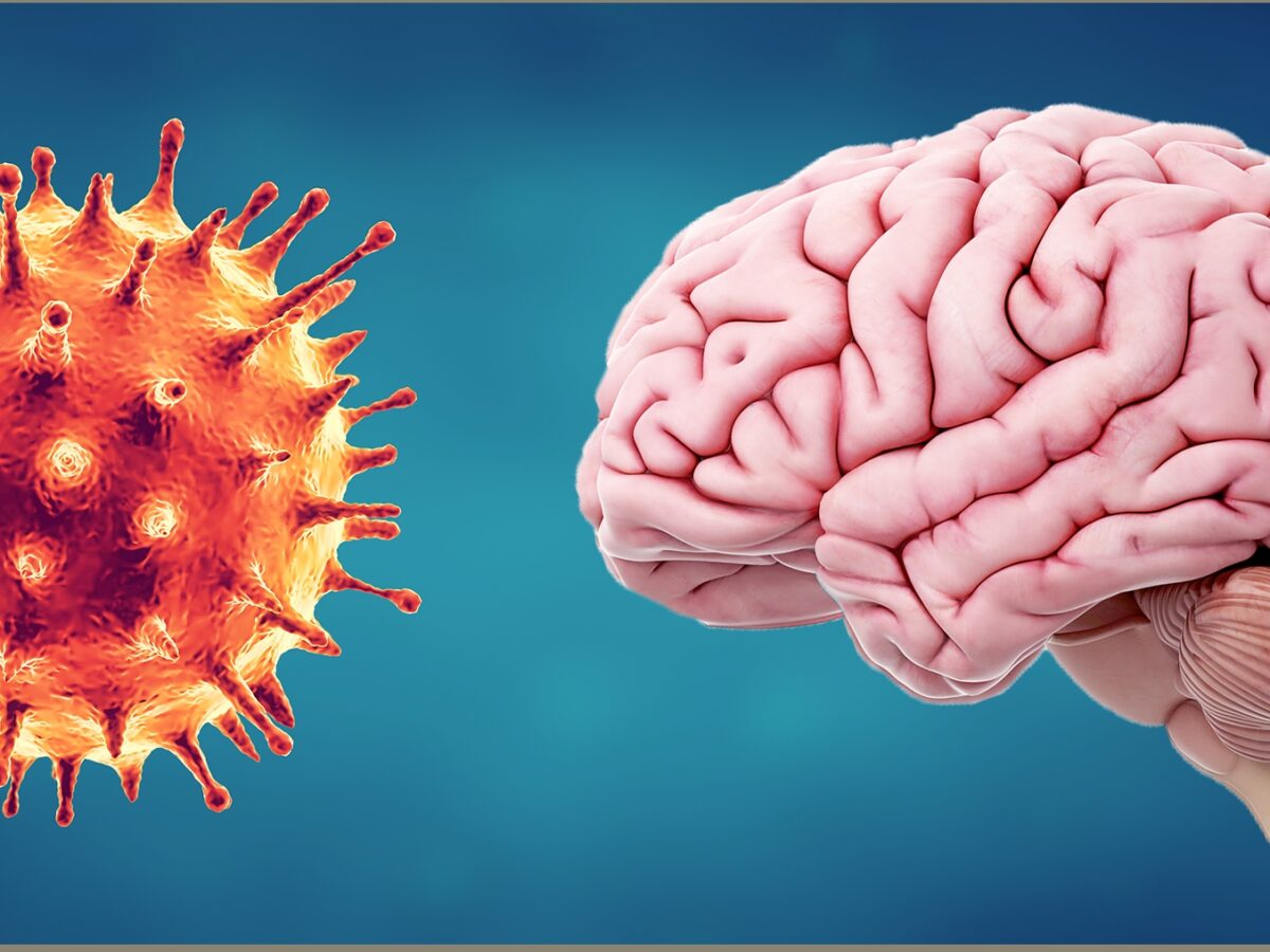 Coronavirus can affect brain: US study
