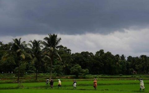 Monsoon surge in Kerala, highest downpour in three decades