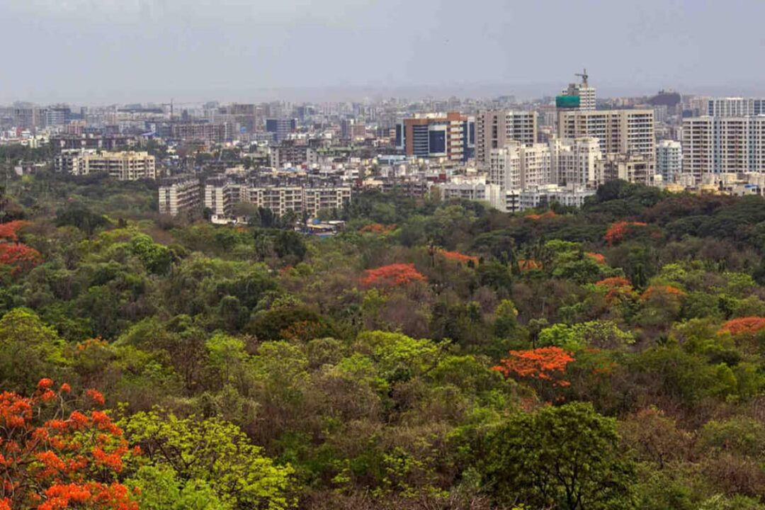 Maharashtra government reserves 600 acres of Aarey