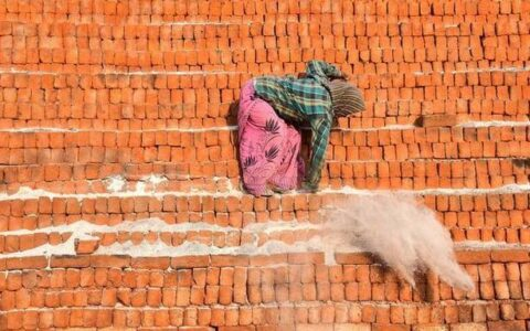 NGT requests UP government to keep a watch on illegal brick kilns