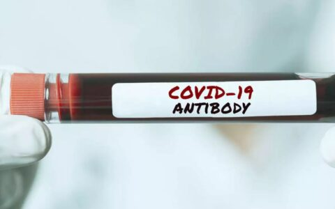 Asymptomatic COVID-19 patients lose antibodies sooner: Study