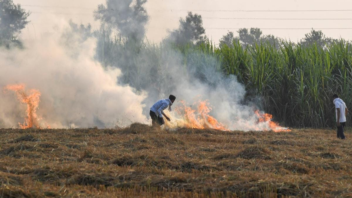 Haryana's AQI at 300 due to stubble burning