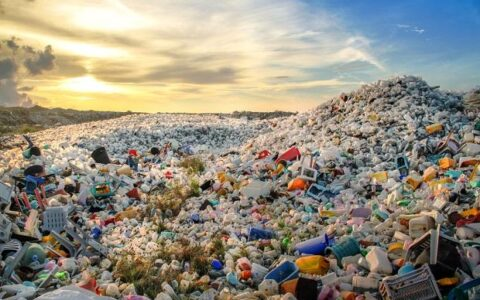 Karnataka ready to get its first waste-to-energy plants