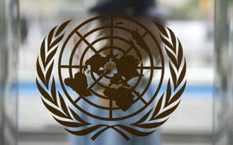 India has the highest diaspora population in the world: UN